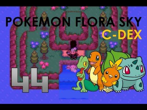 Pokemon flora sky mt fullmoon walkthrough