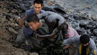Through the Lens: the Dalian Oil Spill