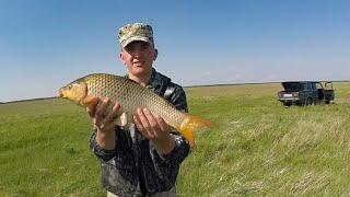 Рыбалка на Сазана и Щуку в поиске трофея