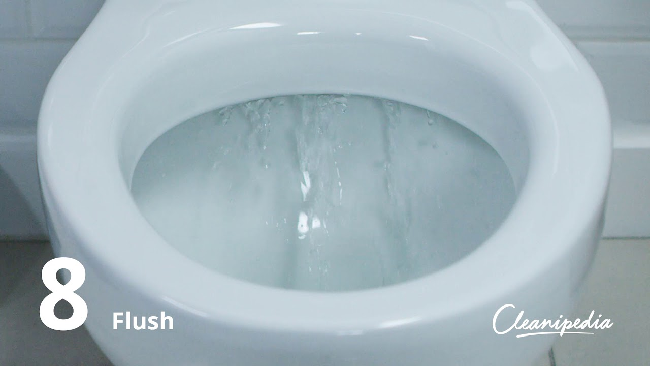 How to keep toilet smelling fresh | Cleanipedia