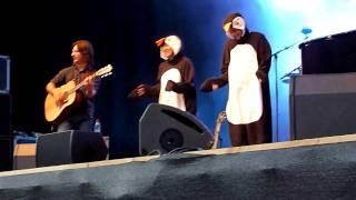 Nicolas Fraissinet - les pinguins