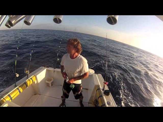 Tuna Crashing
