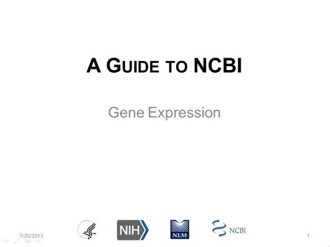 A Guide to NCBI: Gene Expression, Part 1