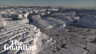 Timelapse shows Antarctic ice shelf collapse after battering from waves