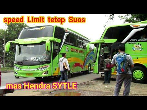 Jkt-Jember Trip bus baru Gunung Harta 070 Jb3,Mas Hendra Sytle