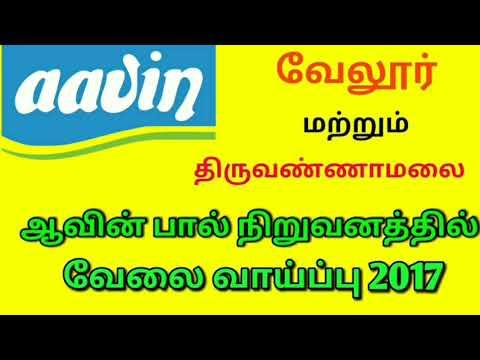 ஆவின் பால் நிறுவனத்தில் வேலை வாய்ப்பு||Aavin neeru vanathi velai vaaipu||tn govt job