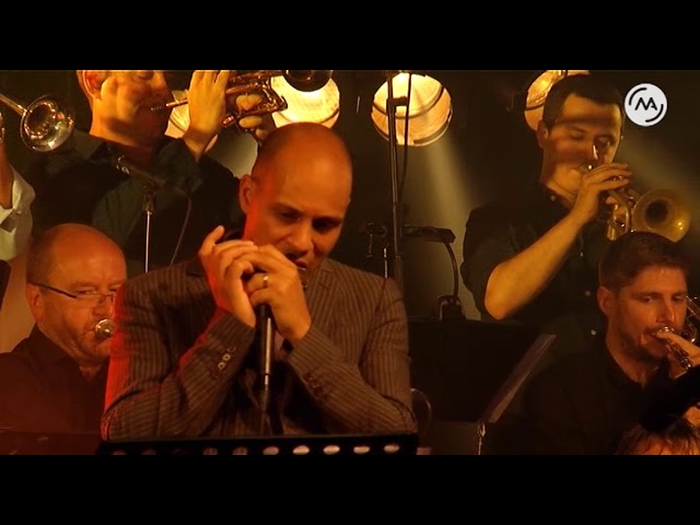 Don't Butt in Line by The Jazz Station Big Band & Grégoire Maret