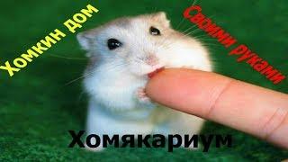 хомякариум своими руками