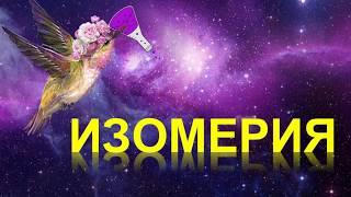 4. Изомерия и ее виды