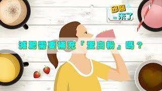 【邱醫來了】減肥減脂期間,需要補充「蛋白粉」嗎?