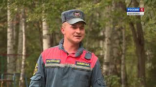 Под Костромой начались соревнования поисковых отрядов кинологов с собаками