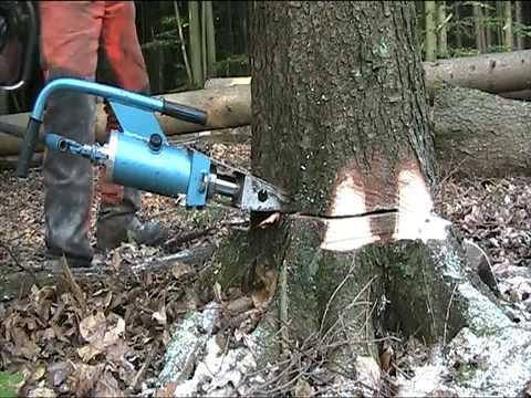 abattage arbre mecanique