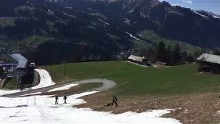 Funny Video: Skiing On Grass Doesn't Work Well