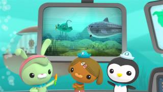 Creature Report - The Octonauts