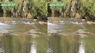 rijeka ukrina uzvodno od mosta 4k3d