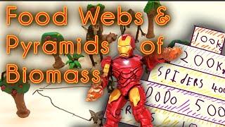 Food Webs & Pyramids of Biomass (GCSE Biology)