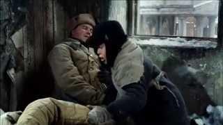 Письмо лейтенанта Л из Сталинграда