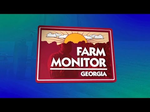 Georgia Farm Monitor - August 8, 2015