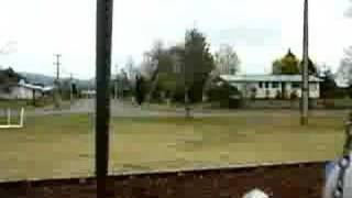 CRAZY HORSE SWING