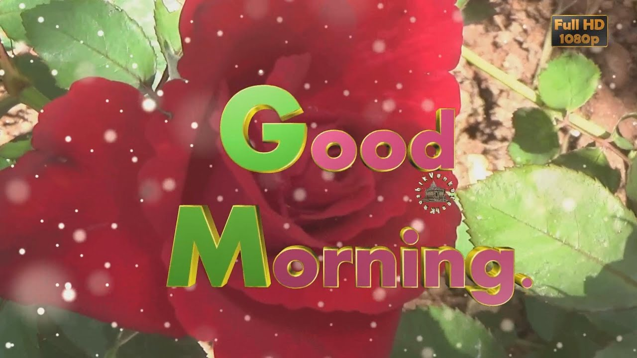 Good Morning Wishes,Whatsapp Video,Greetings,Animation,Messages,Quotes ,Download