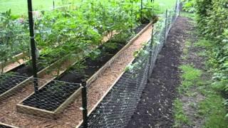 Two Week Raised Garden Project