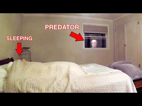Catching a Child Predator | Predator Caught Watching Girl Sleep (Social Experiment)