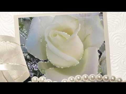 Белая роза, символ вечной любви,