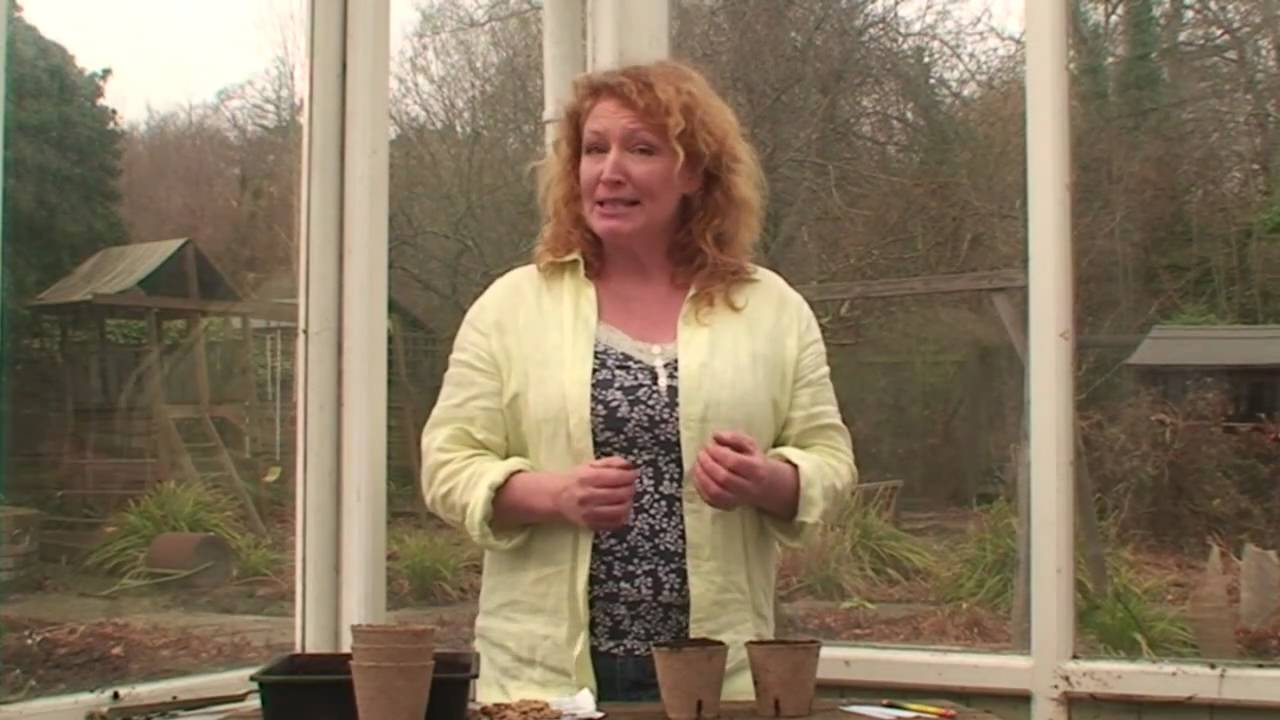 Lovely Planting Seeds 1   Charlie Dimmock   Gardening Direct   YouTube