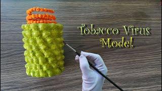 How to make Tobacco Mosaic Virus Model