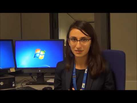 Kalina's translation traineeship at the European Commission