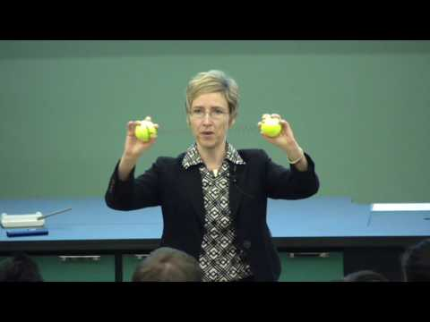 Lecture 08 Potential and Potential Energy