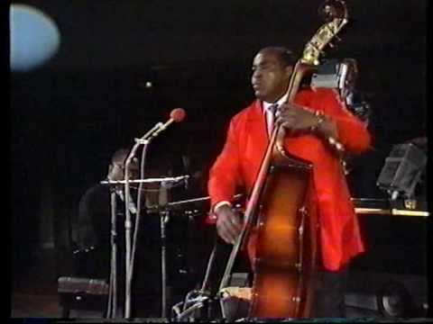 the chicago blues allstars