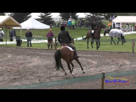 296S Jeff Goodwin on Snip Of The Mist SR Training Show Jumping The Event at Rebecca Farm July 2015