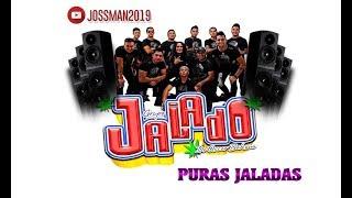 Grupo Jalado - 2019 - Puras Jaladas