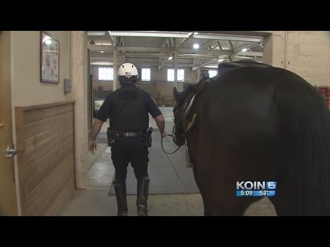 Demolition would prevent horse patrol from returning