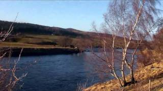 The Speyside Way from Boat of Garten to Grantown on Spey. 1st Feb 2011