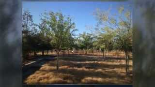 Fresno California Ranches and Farms for sale