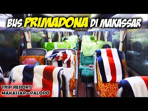 Trip report Bus PRIMADONA DI MAKASSAR, Makassar—Palopo