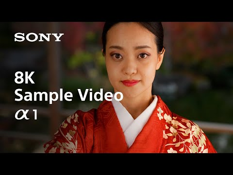 Get A First Look At The 8K & 4K Footage From Sony's New Flagship Alpha 1 Mirrorless Camera