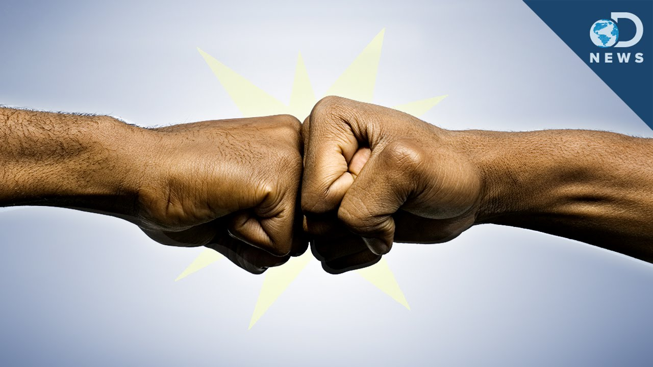 Why the fist bump is better than the handshake youtube why the fist bump is better than the handshake m4hsunfo