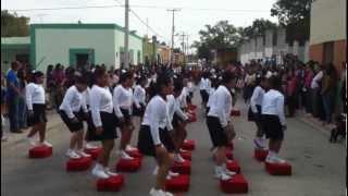 Desfile 20 Noviembre 2012
