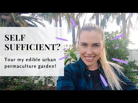 urban-permaculture-garden-tour-|-autumn-|-perth,-australia