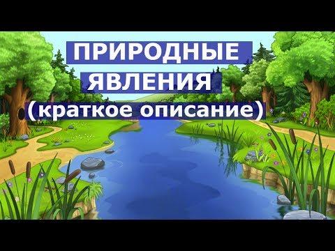 ПРИРОДНЫЕ ЯВЛЕНИЯ(краткое описание). Развивающее видео для детей 3 - 6 лет.