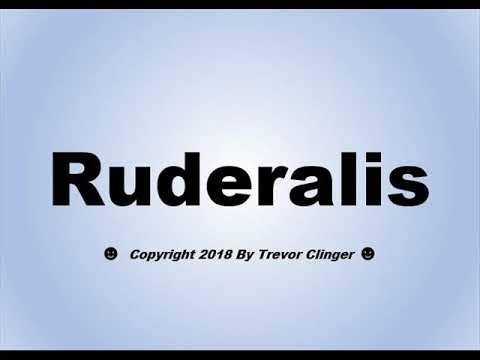 Ruderalis pronounce