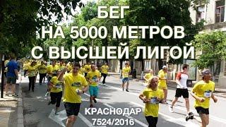 Бег на 5000 метров с Высшей Лигой г. Краснодар. Der 5000-Meter-Lauf in Krasnodar. 7524/2016