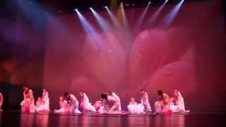 Mitsi Dancing School - Flowers in the Rain