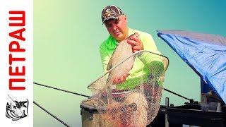 рыбалка видео лещ летом