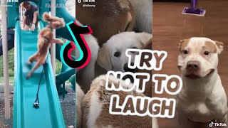 TRY NOT TO LAUGH CHALLENGE - Ultimate EPIC FAILS TikTok Compilation 2020