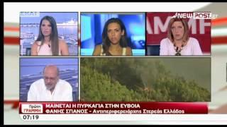 Αντιπεριφερειάρχης Στερεάς Ελλάδας για πυρκαγιά στην Εύβοια