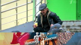 Ивановский ходок. Мужское / Женское. Выпуск от 28.11.2019
